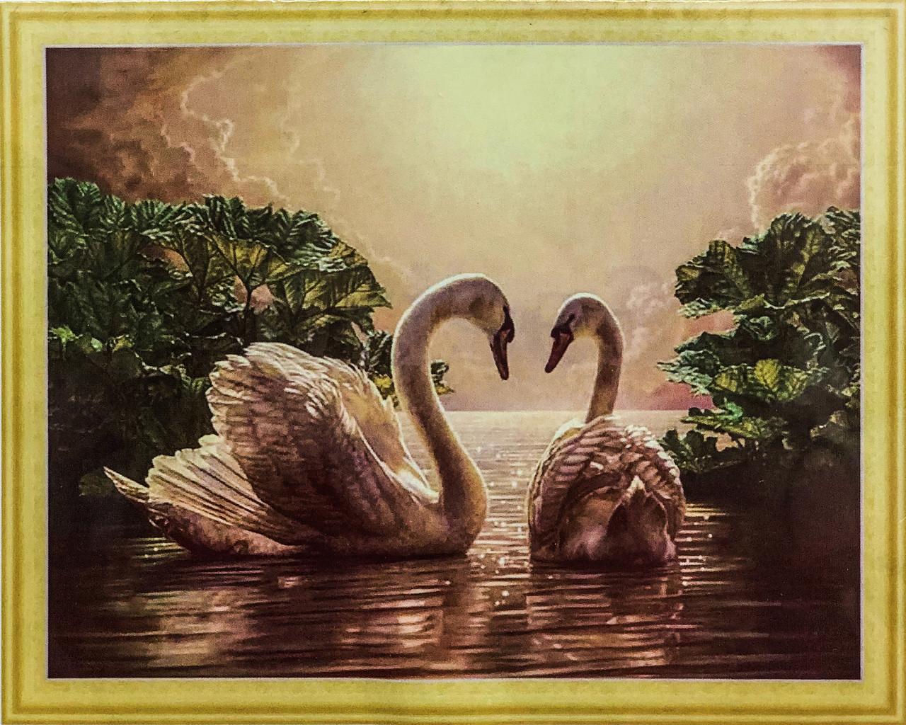 """Алмазная Мозаика на подрамнике . Набор алмазной вышивки на подрамнике """"Пара лебедей"""". Размер 50*40 см."""