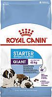 Корм для собак Royal Canin GIANT STARTER MOTHER&BABYDOG (Роял Канин Джеант Стартер Мазер & Бэйбидог) 4 кг