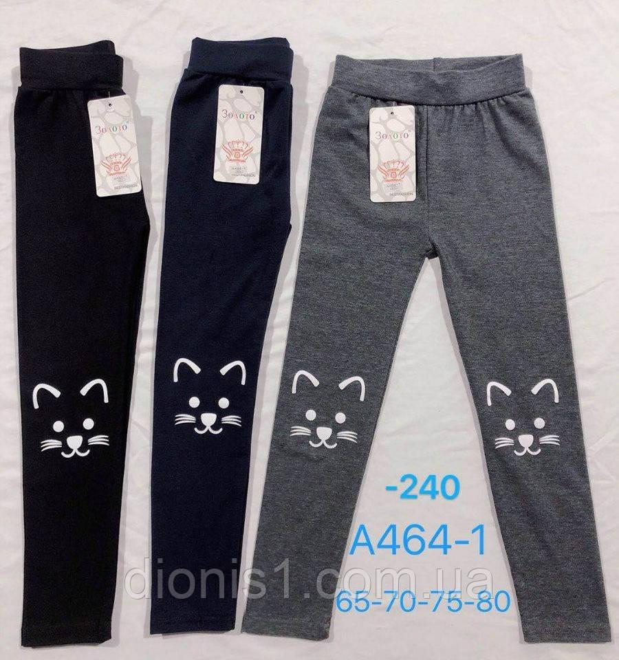 Лосины детские для девочки котята размер 65-70-75-80 6 шт в уп.