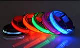 Ошейник LED светящийся узкий для небольших собак и кошек 0.5 м СИНИЙ, фото 2