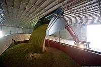 Ангары для хранения зерна. Строительство
