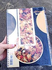 Книга канцелярская на спирали 80л ТА4280