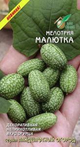 Семена Мелотрия МАЛЮТКА 8 шт.
