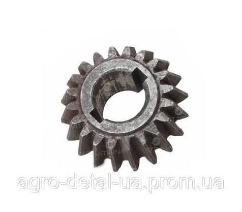 Шестерня коническая ДСШ 14.40.106 малая механизма рулевого управления Т 16