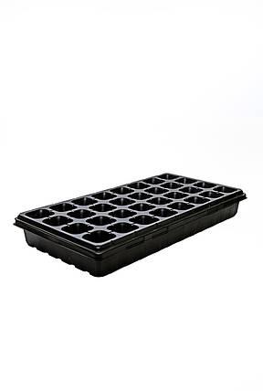 Касети для розсади 4х8, фото 2