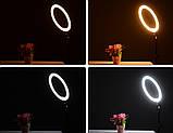 """Кольцевая LED лампа диаметром SMN-12"""" (30 см) с пультом и зеркалом Black (14418), фото 6"""