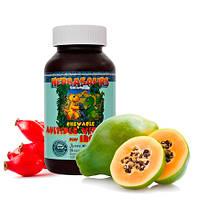 Витазаврики - детские жевательные мультивитамины с железом •Herbasaurus Сhewable Vitamins Plus Iron