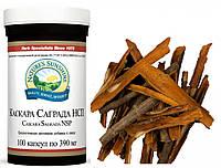 Cascara Sagrada / Каскара Саграда • Кора жостера - эффективное натуральное слабительное при запорах