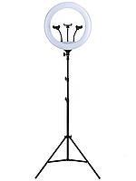 Профессиональная кольцевая лампа 45 см на штативе yq-460b, фото 1