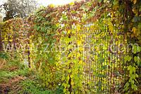 Забор из сварной сетки  для ограждения частных территорий