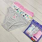 Детские трусики для девочек 3-4 года, фото 2