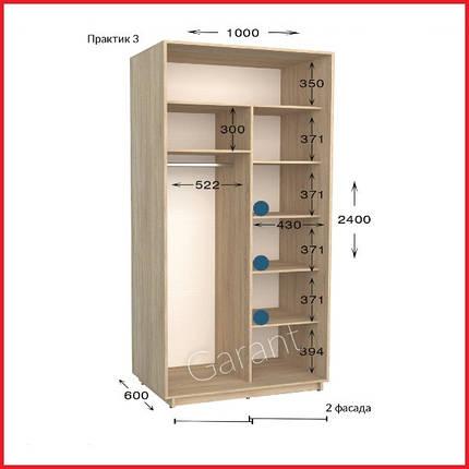 Шкаф купе ПРАКТИК 3 / ширина-1000/ глубина-450/600/ высота-2200/2400 (Гарант), фото 2