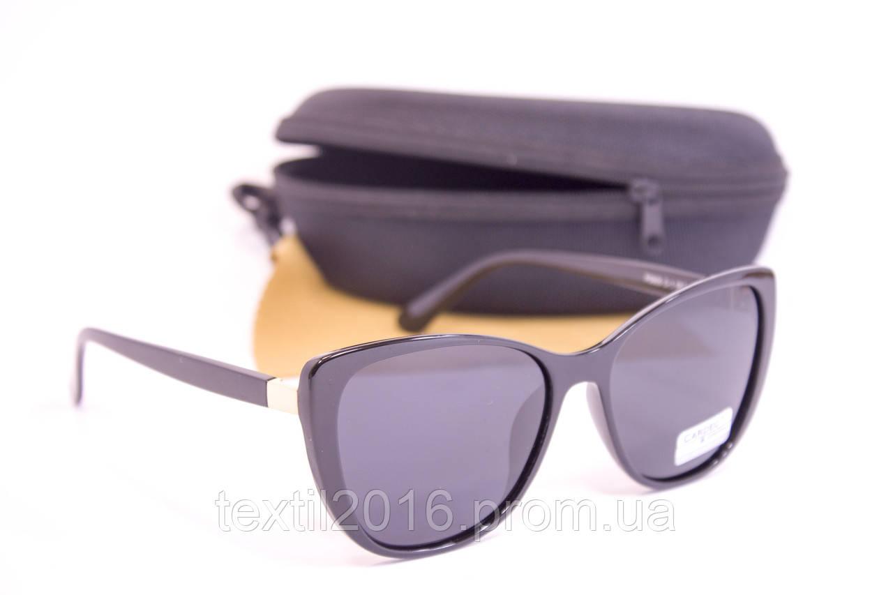 Сонцезахисні окуляри з футляром F0905-1
