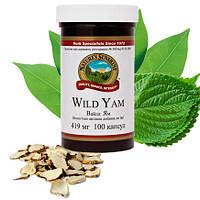 Wild Yam / Дикий Ямс • Нормализация гормонального баланса женщин