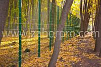 Забор из сварной сетки для ограждения парковых зон