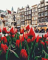 """Алмазная картина-раскраска по номерам Brushme """"Тюльпаны Амстердама"""" 40х50 см"""