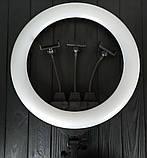 Кільцева LED лампа з пультом 45 см., фото 3