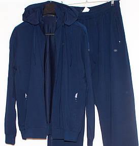 Спортивний костюм чоловічий з капюшоном великій розмір Piyera7525 (3X-5XL)