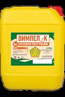 Препарат для оброботки семян Вымпел К (канистра 5кг)