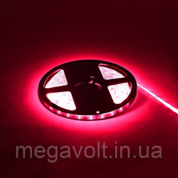 Светодиодная лента AMAZON красная 12V DC