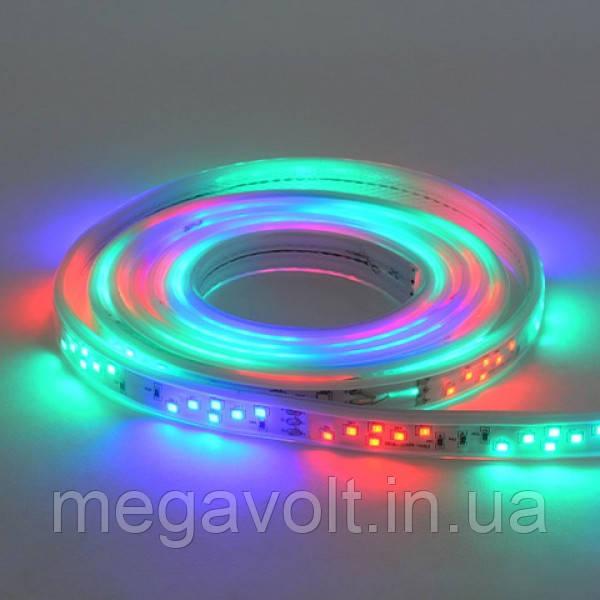 Светодиодная лента COLORADO/RGB 220-240V IP65