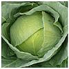БРАКСАН F1 - капуста белокочанная, Syngenta 2 500 семян