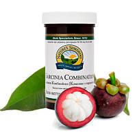 Garcinia Combination NSP Комплекс с Гарцинией камбоджийской для похудения