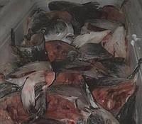 Головы лосося суповой набор
