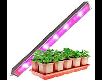Фитоосвещение для растений