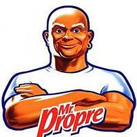 Универсальный чистящий порошок Mr Proper 400 г