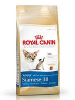 Royal Canin SIAMESE 38 - корм для сиамских кошек 10 кг