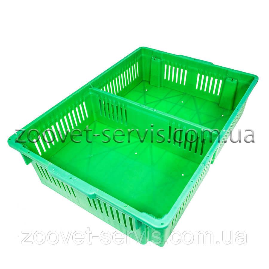 Большой ящик для перевозки цыплят на 2 отсека