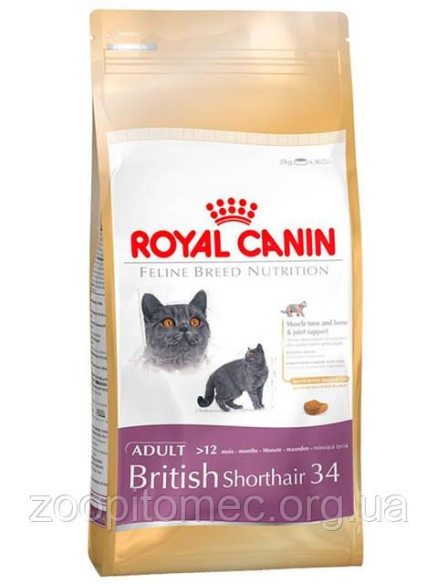 Royal Canin BRITISH SHORTHAIR 34 - корм для британских кошек 10 кг.