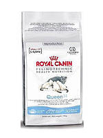 Royal Canin (Роял Канин) Queen 34 4 кг