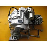 Двигатель в сборе Delta 110cc