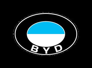 БИД (BYD)
