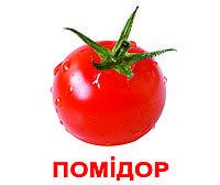 """Комплект карток """"Овочі"""" з фактами, фото 1"""