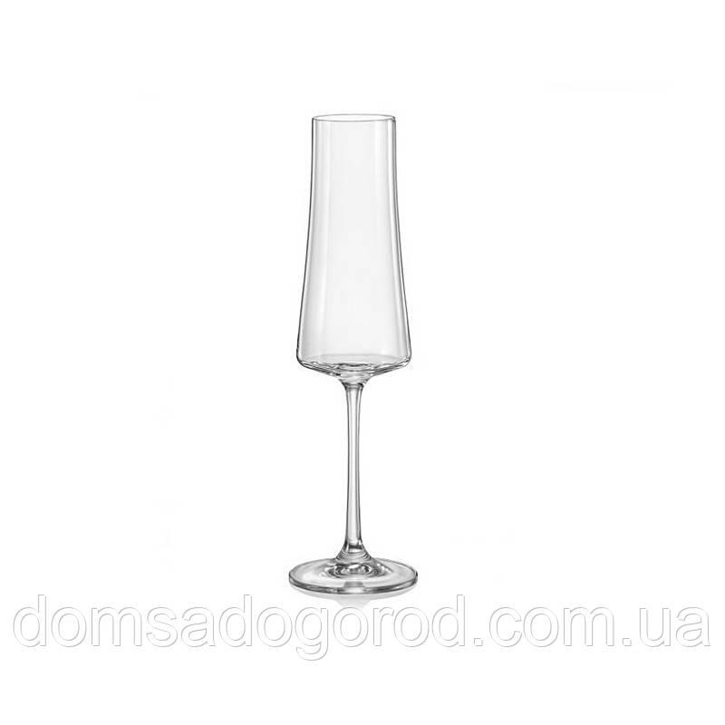 Набір келихів для вина Bohemia Xtra 210 мл, 6шт 40862