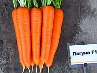 Морковь Лагуна F1 Nunhems 25000 семян 1.6-1.8