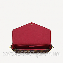 Клатч Louis Vuitton Felicie Monogram, фото 2