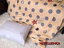 Полуторный набор постельного белья 150*220 из Сатина №051AB Черешенка™, фото 2
