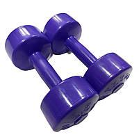 Гантели для фитнеса Титан 2,5 кг х 2 шт.