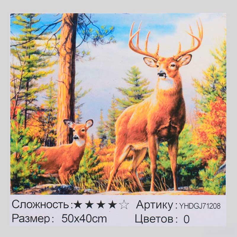 """Картина за номерами з алмазною мозаїкою 2в1 """"Олені"""" YHDGJ71208, 50-40 см"""