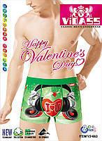 Трусы мужские боксеры Vidass хлопок + бамбук ТМБ-115