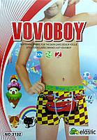 """Детские боксеры х/б """"Vovoboy"""" ТДБ-17"""