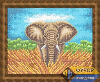 Схема для вышивки бисером картины Слон (ЖБп3-167)