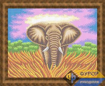 Схема для вышивки бисером картины Слон (ЖБп3-168)