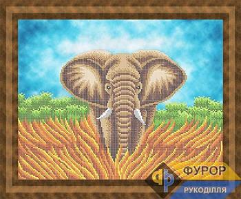 Схема для вышивки бисером картины Слон (ЖБч3-169)