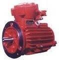 Электродвигатель ВРП225М2  (55кВт\3000 об. мин)