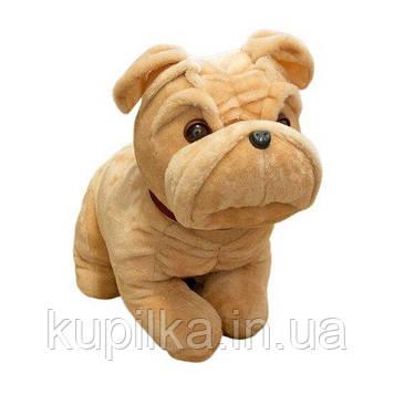 Мягкая игрушка Zolushka собака бульдог сидячий большой 49см (ZL011)